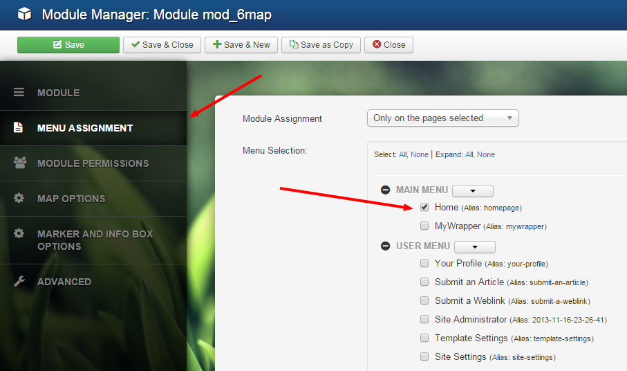How to display Joomla! module on the frontend. Set page